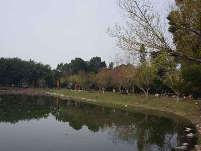 a26水生生態池.JPG
