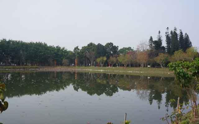 a28水生生態池.JPG