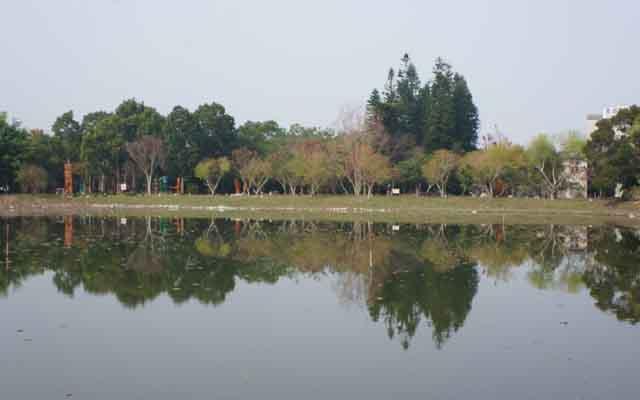 a29水生生態池.JPG