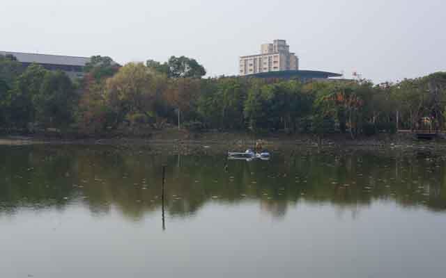 a30水生生態池.JPG