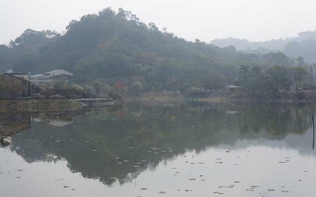 a32水生生態池.JPG