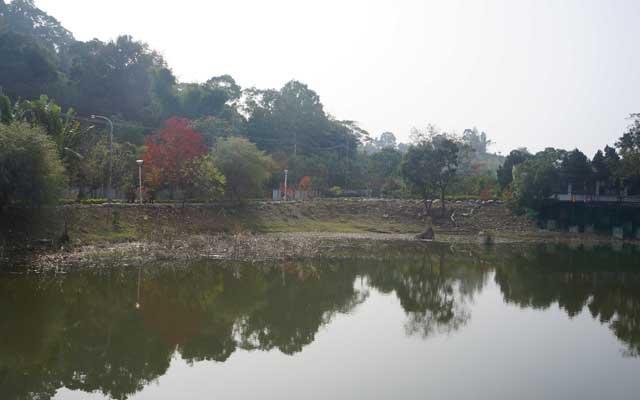 a35水生生態池.JPG