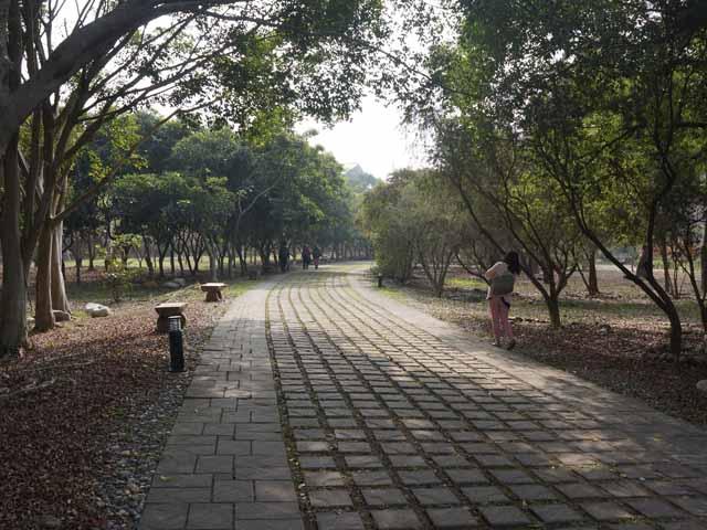 a53園區步道.JPG