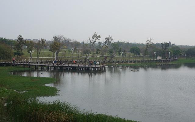 a41奇美博物館周圍景觀.JPG
