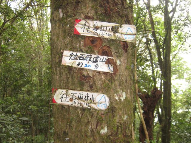 a14往島田山的指標.JPG