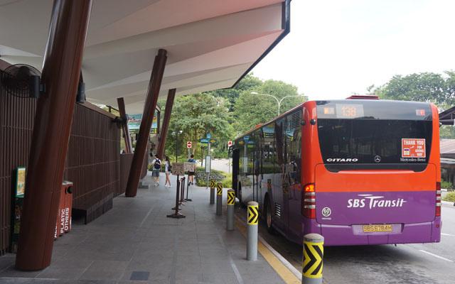 a17 138公車.JPG