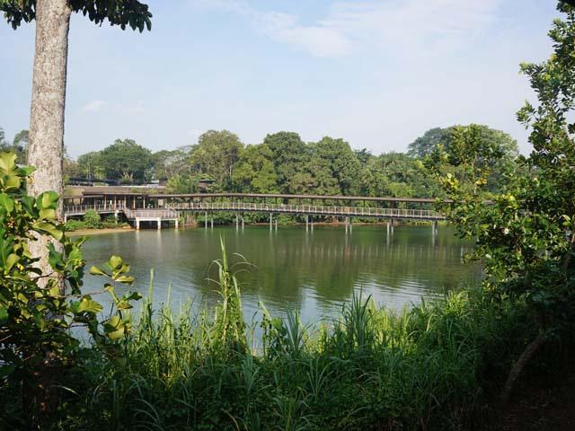 a37園區景觀.JPG