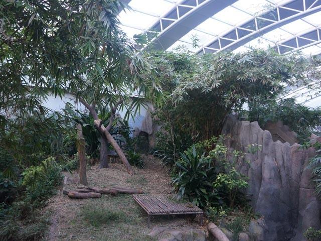 a48大熊貓的家.JPG