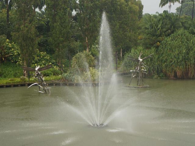 a17蜻蜓點水.JPG