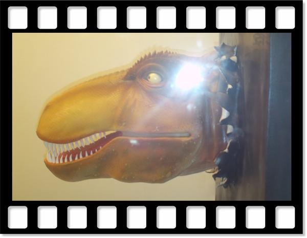 恐龍-1.jpg