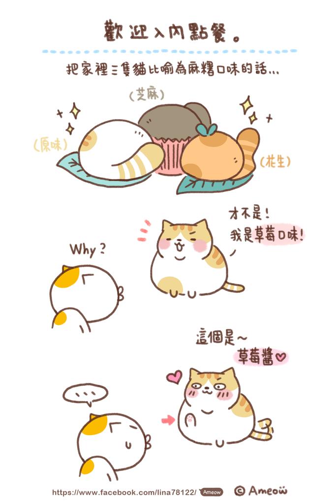 貓咪麻糬.png