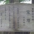 SI850958.JPG