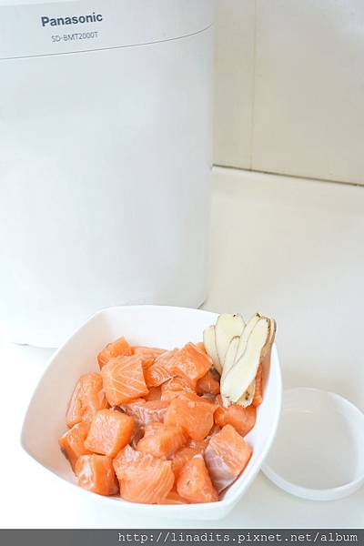 鮭魚1 (2).jpg