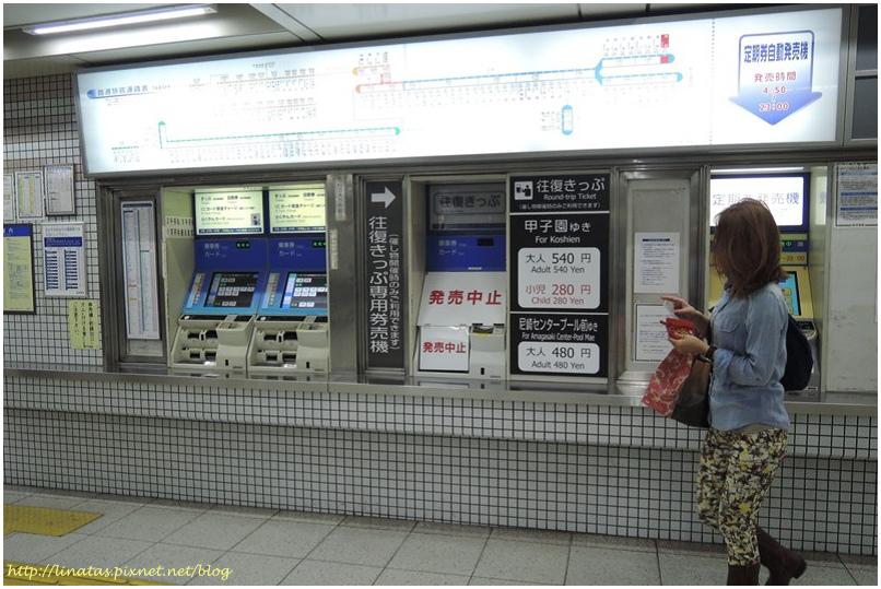 甲子園002.JPG