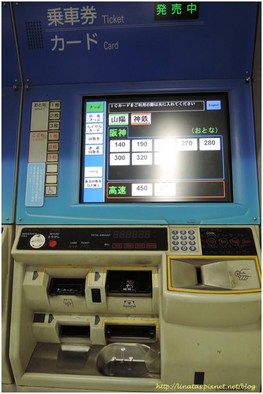 甲子園003.JPG