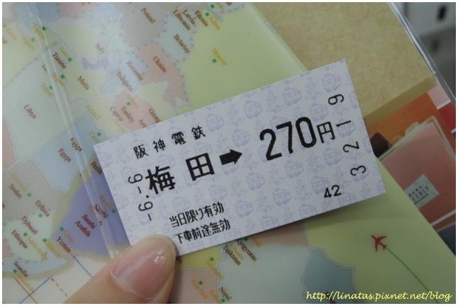 甲子園004.JPG