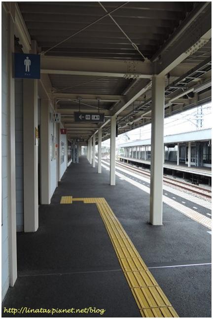 甲子園012.JPG