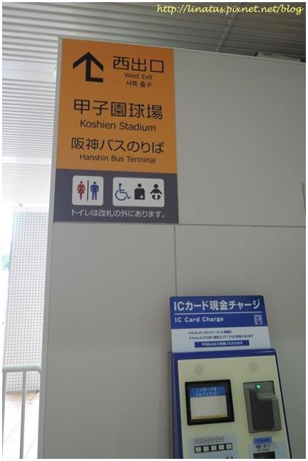 甲子園017.JPG