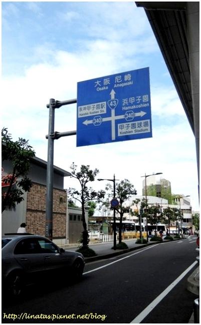 甲子園027.JPG