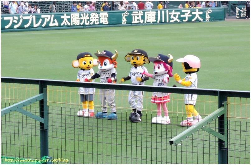 甲子園038.JPG