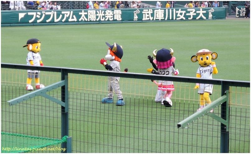 甲子園039.JPG