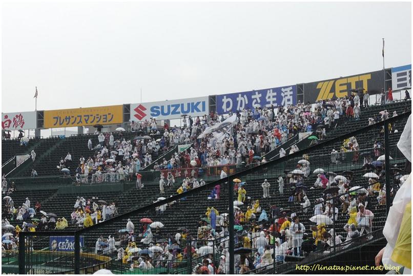 甲子園040.JPG