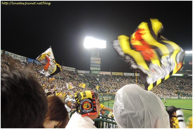 甲子園050.JPG
