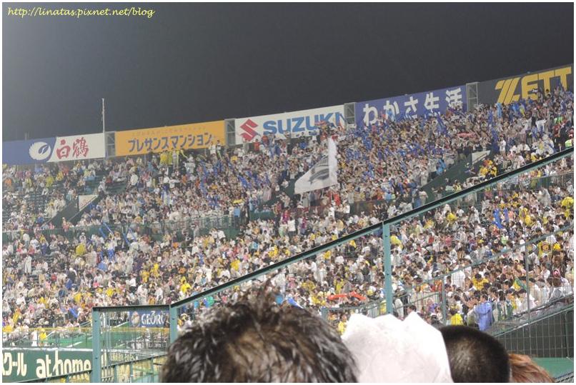 甲子園053.JPG