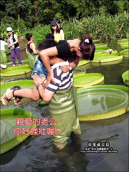 吳厝楊家莊-2010-0815 (26).jpg