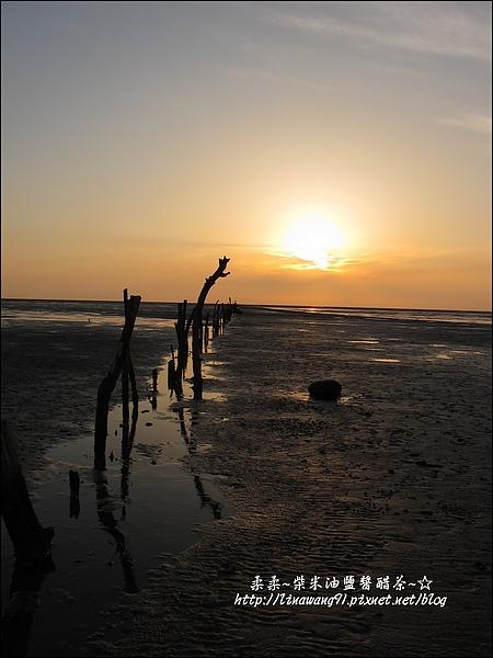 2010-0531-香山濕地-夕陽照 (14).jpg