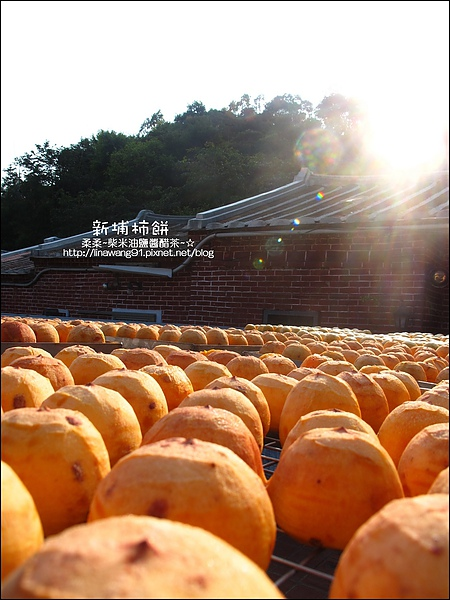 2010-1026~1102-新埔-金漢柿餅 (23).jpg