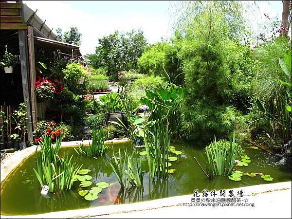 2010-0531-苗栗卓蘭-花露休閒農場 (15).jpg