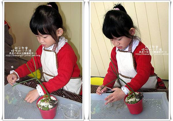媽咪小太陽親子聚會-2011-0110-綠色-多肉植物 (32).jpg