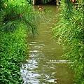 劉家莊悶雞-2010-0726 (22).jpg