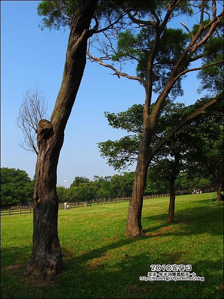 2010-1002-埔新牧場-公司家庭日 (38).jpg