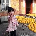 2010-1026~1102-新埔-衛味佳柿餅 (14).jpg