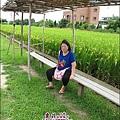 苗栗-公館-棗莊-2010-0702 (35).jpg