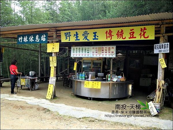 2010-0608-南投-天梯 (2).jpg