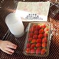 媽咪小太陽親子聚會-2010-1220-植物染草莓 (6).jpg