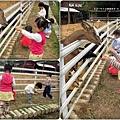 2011-0428-星期一-小太陽同學會-香山牧場 (27).jpg