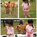 2011-0428-星期一-小太陽同學會-香山牧場 (30).jpg