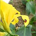 2011-0521-金谷農場 (22).jpg