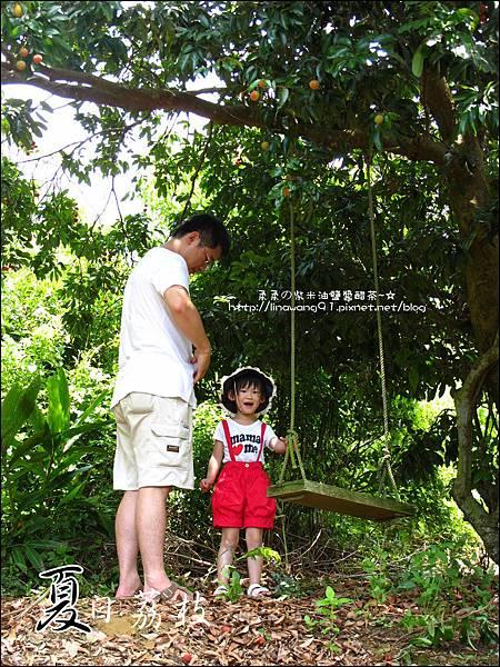 2011-0716-新竹-德聲觀光果園-採荔枝 (16).jpg