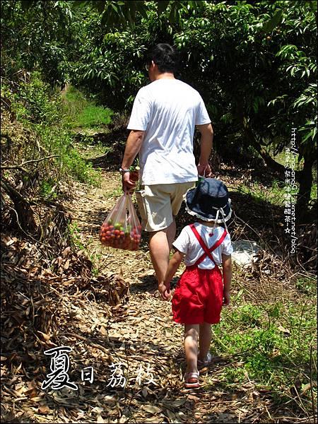 2011-0716-新竹-德聲觀光果園-採荔枝 (23).jpg