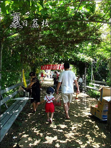 2011-0716-新竹-德聲觀光果園-採荔枝 (24).jpg