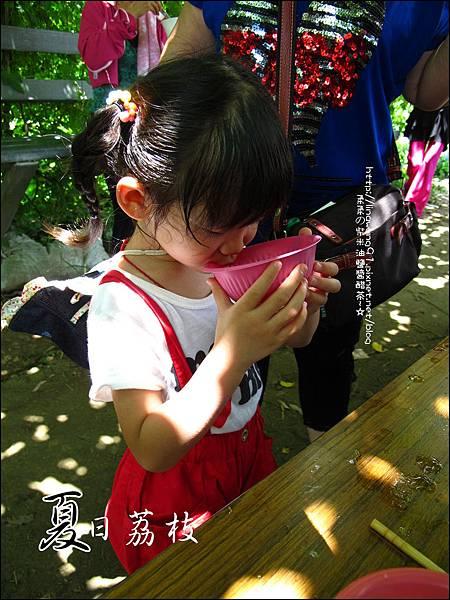 2011-0716-新竹-德聲觀光果園-採荔枝 (28).jpg