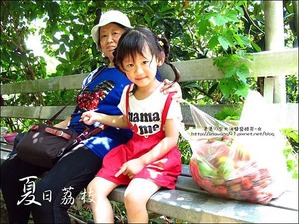 2011-0716-新竹-德聲觀光果園-採荔枝 (31).jpg