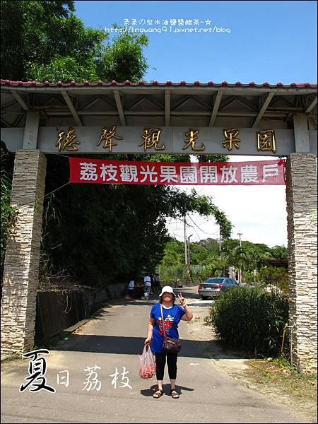 2011-0716-新竹-德聲觀光果園-採荔枝 (48).jpg