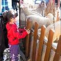 2010-1212 -南投-清境農場-青青草原 (4).jpg