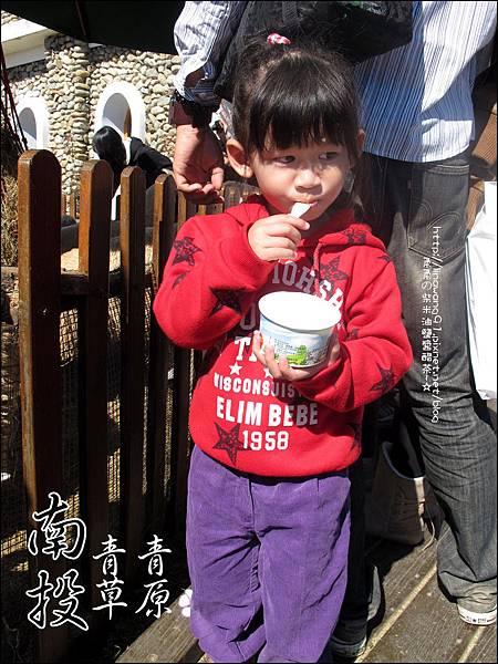 2010-1212 -南投-清境農場-青青草原 (6).jpg